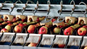 Mechanisierung der Landwirtschaf